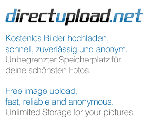 http://s3b.directupload.net/images/100304/usd3yevw.png